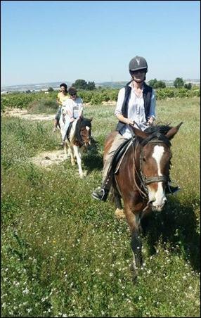 Horses 4[6]